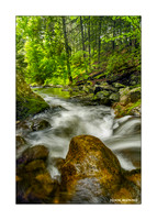 Kettletown Gorge Greeting Card