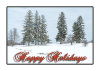 Connecticut Christmas Cards