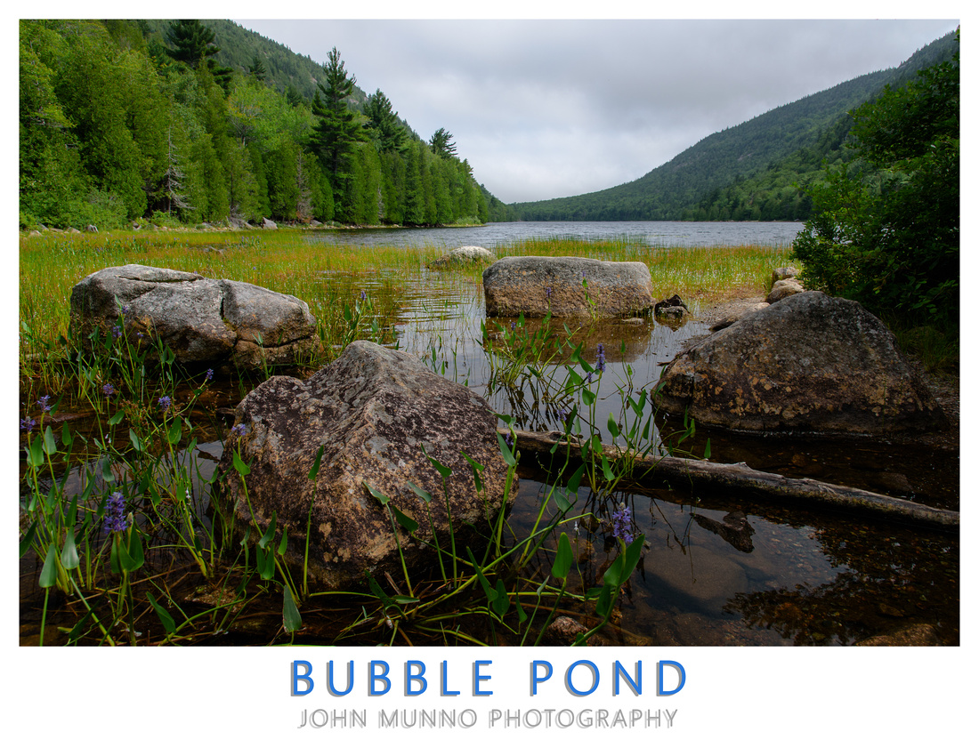 Bubble Pond Poster