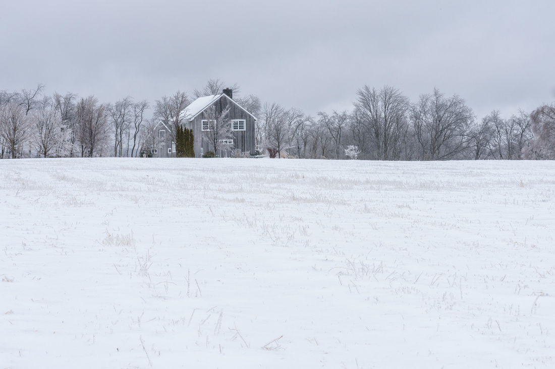 Winter 1.21.19-246