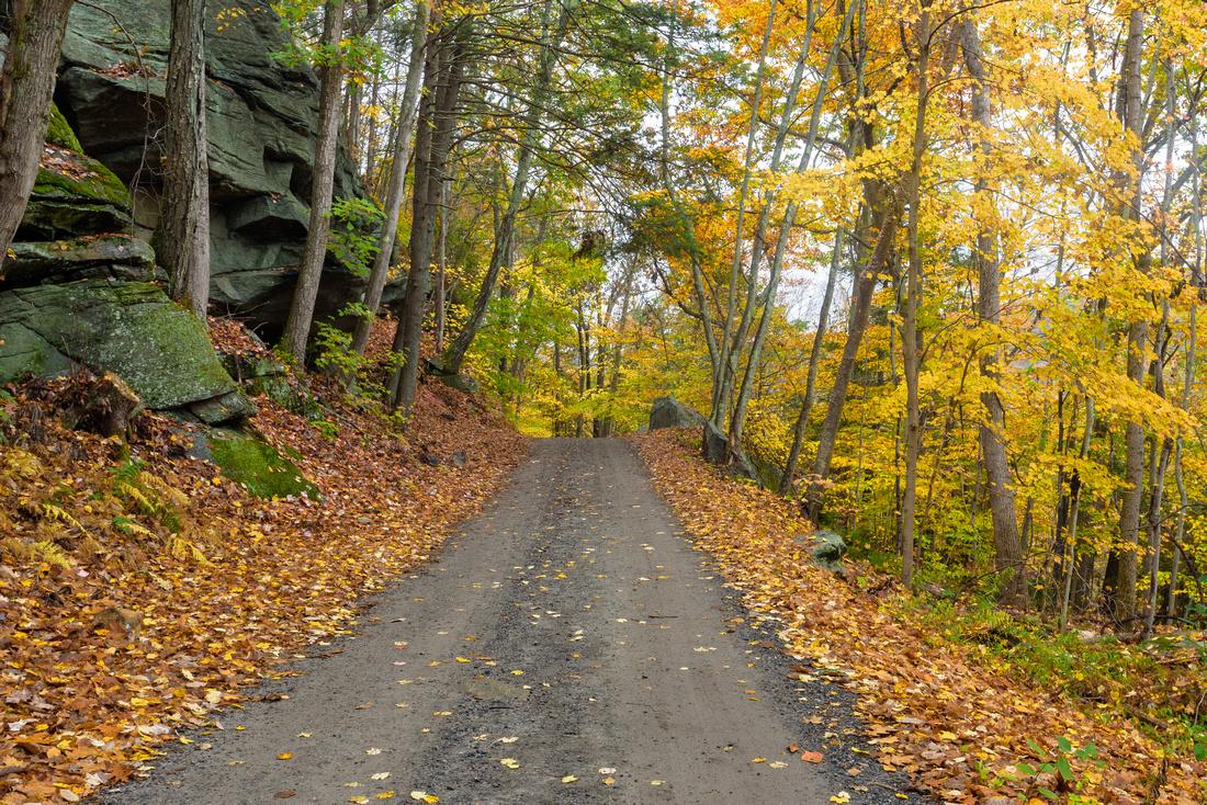 Webb Mountain Park