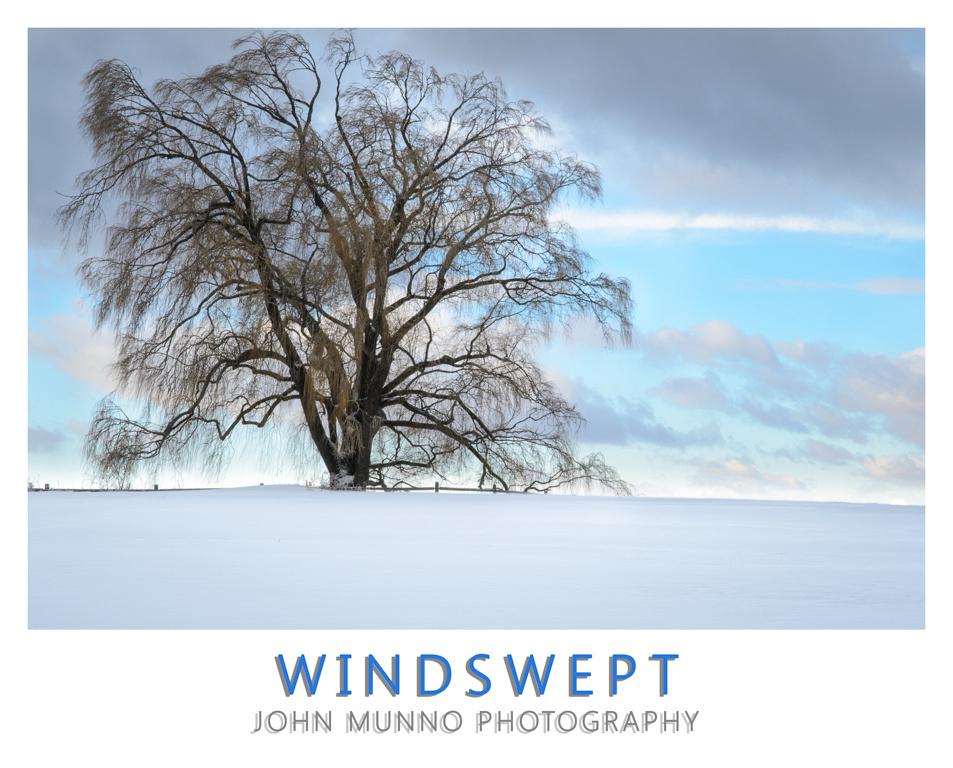 Wind Swept