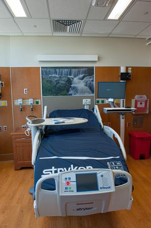 bringing healing and nature art to hospital environments