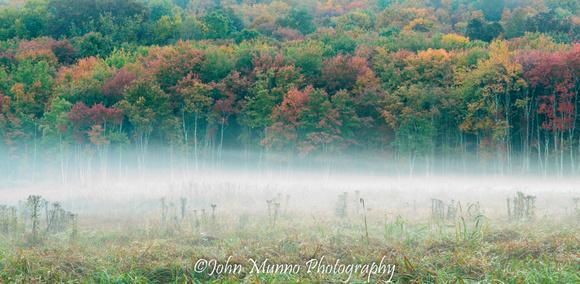 Roxbury Mist