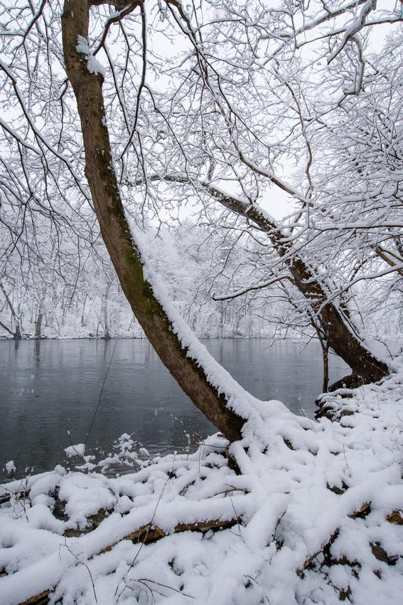 Winter 4.2.18-123